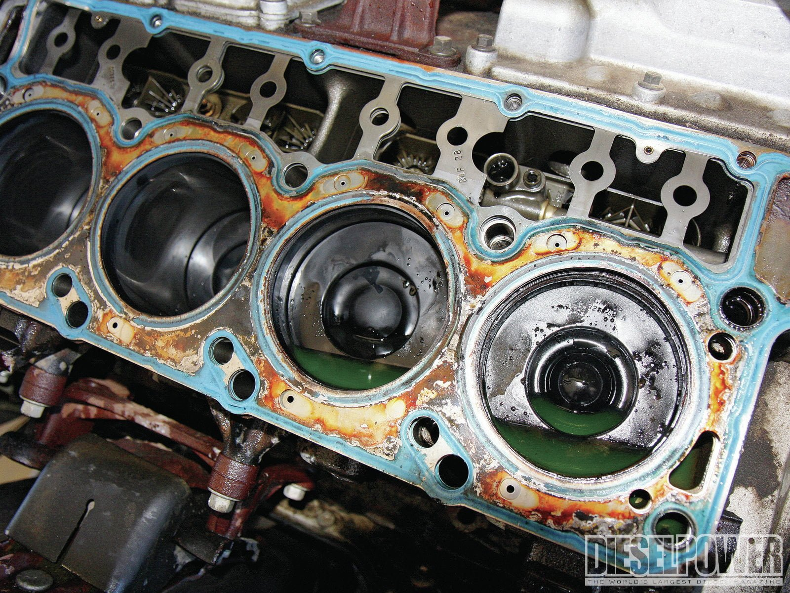 What Are The Symptoms Of A Blown Head Gasket Bluedevil